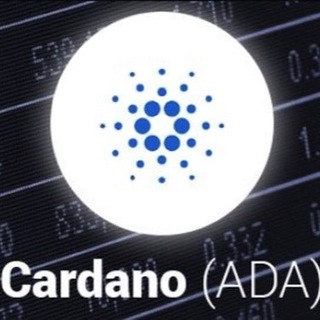 Cardano Forum and updates